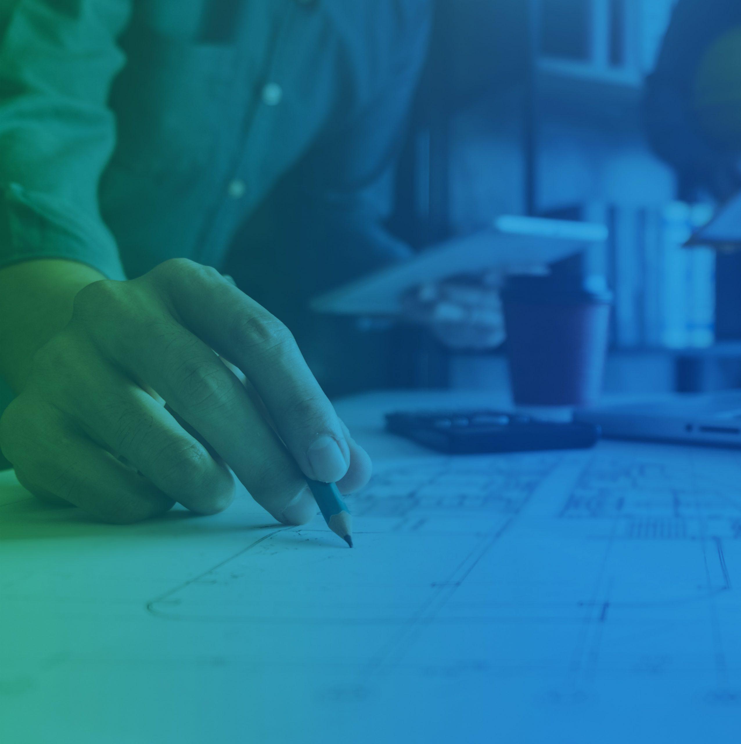 bonifica project management